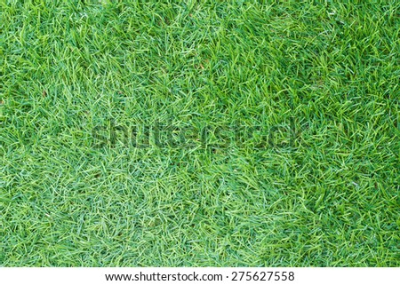 Green artificial turf suitable for a background or texture.