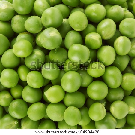 Green  as abakground - stock photo