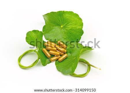 Green Asiatic Pennywort (Centella asiatica ) and yellow pill capsules on white background - stock photo