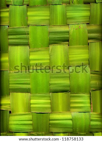 green background made of palm leaves