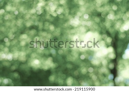 green background wallpaper bubble abstract focus color