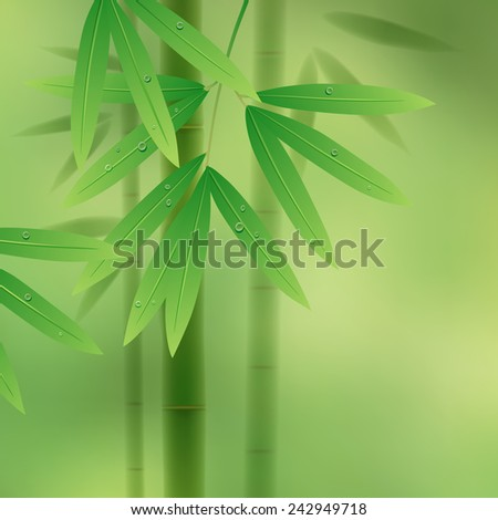 Green background with bamboo stems and leaves - stock photo