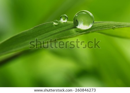 green background with rain droplets , shot with very shallow depth of field