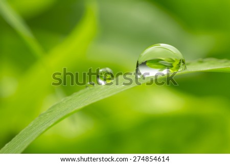 green background with rain droplets , shot with very shallow depth of field - stock photo