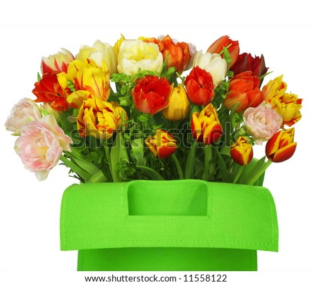 green bag with beautiful tulip bouquet. clouse-up. isolated on white background - stock photo
