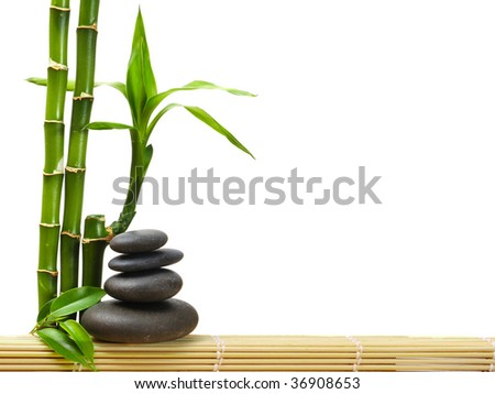 green bamboo and stones on the white background