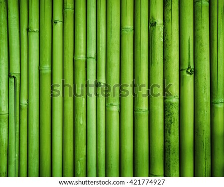 Green bamboo fence texture, bamboo background