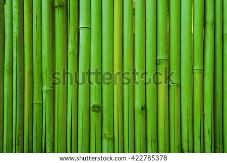 Green bamboo fence texture, bamboo background, texture background - stock photo