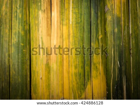 green bamboo texture and background - stock photo