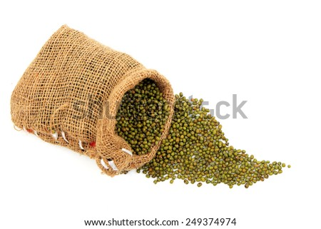 Green bean seed background for design