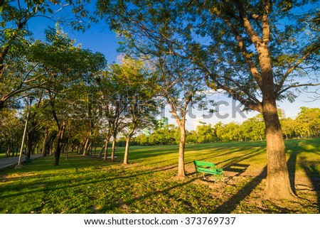 Green bench in a beautiful park, Peaceful park in the city