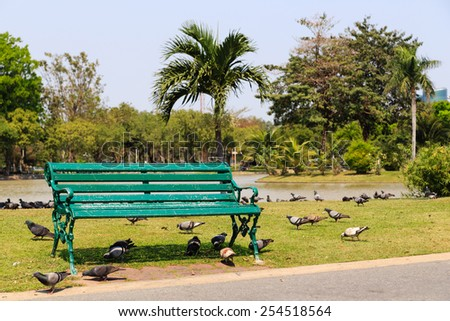 Green bench in the city park with pigeon. - stock photo