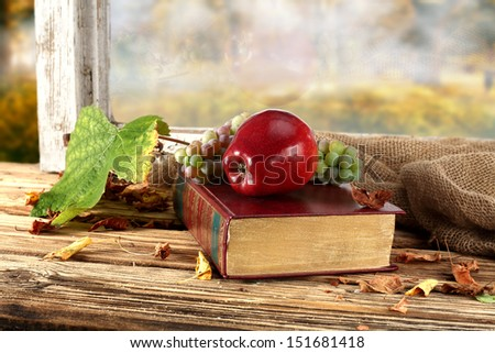 green big leaf and red apple on book  - stock photo