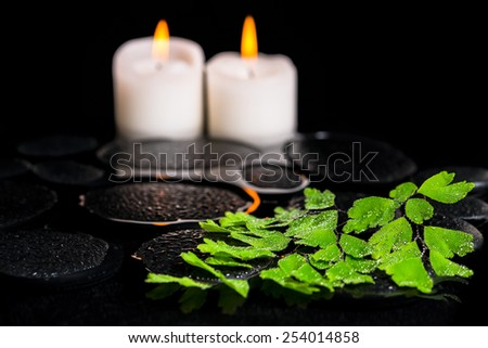 green branch Adiantum fern with drops and candles on zen basalt stones in reflection water, beautiful spa concept, closeup  - stock photo