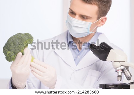 green broccoli in genetic engineering laboratory. man holding broccoli and looking on white background - stock photo