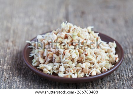 Green buckwheat sprouts in a bowl, close up, selective focus - stock photo
