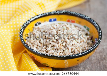 Green buckwheat sprouts in a yellow bowl, close up, selective focus - stock photo