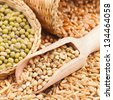 Green buckwheat, wheat, oat and mung - Cereal Grains and beans - stock photo