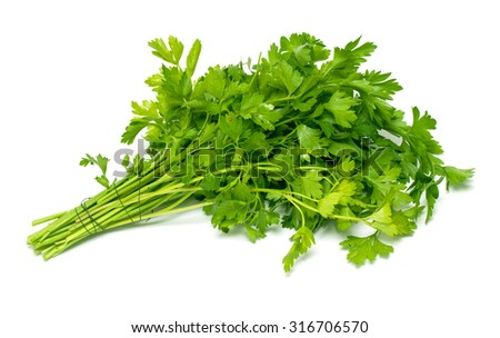 Green bunch of parsley - stock photo