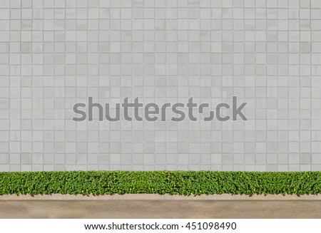 Green Bushes fences at white brick wall  and concrete floor at walk way  - stock photo