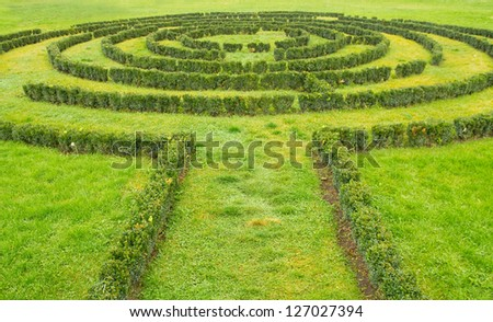 Green bushes Labyrinth - stock photo