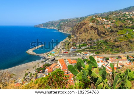 Green cactus plants and view of Camara de Lobos town, Madeira island, Portugal  - stock photo