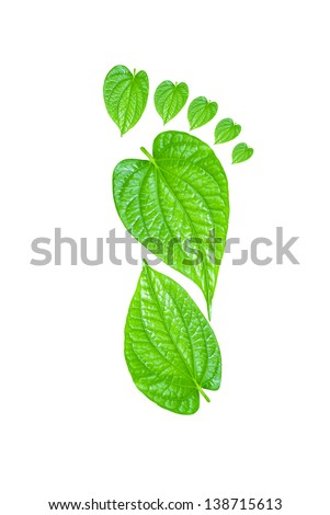 Green Carbon Foot Print Concept made from tree leaf
