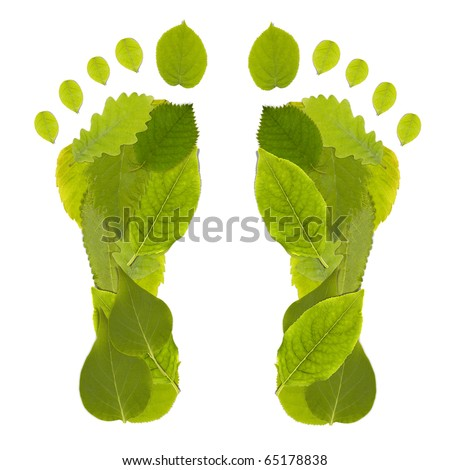 Green Carbon Leaf Footprint studio shot