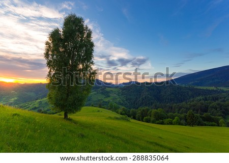 green carpathian mountain slopes in the sunset time. - stock photo