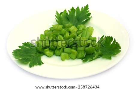 Green celery on a plate over white background - stock photo