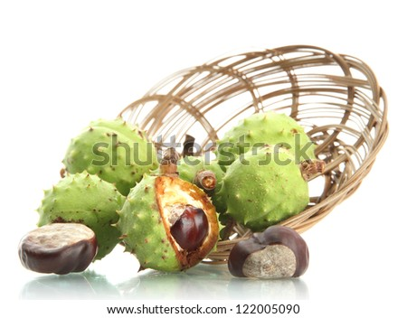 green chestnuts in basket, isolated on white - stock photo