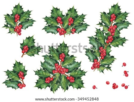 Green Christmas holly branches and berries. Set of decoration. Original watercolor hand drawn pattern.  - stock photo