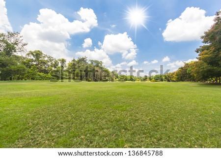 Green city park and sunny light - stock photo