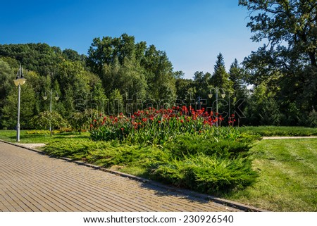 Green city park in sunny summer day - stock photo