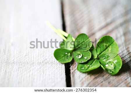 Green clover leaves on wooden background - stock photo