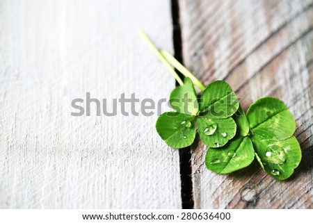 Green clover leaves with drops on wooden background - stock photo