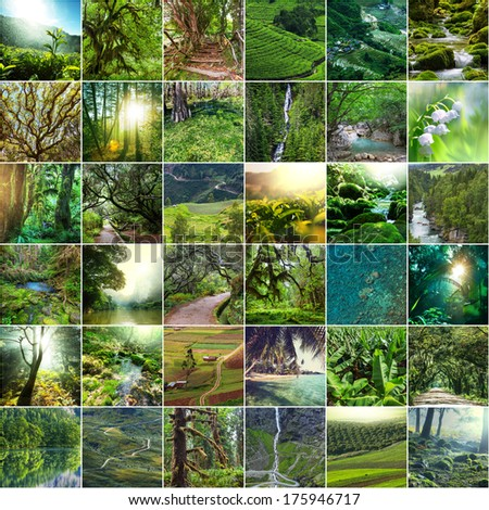green collage