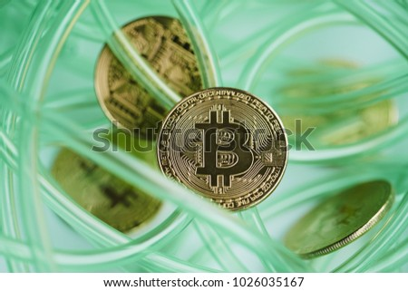 green color cable on white background. abstract. bitcoin.