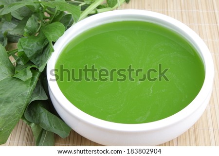 Green cream soup from spinach - stock photo