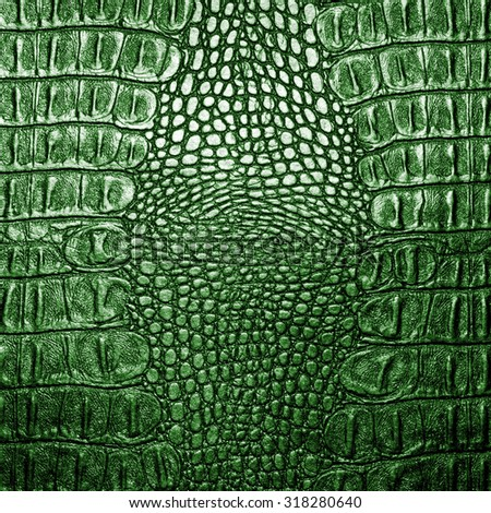 Green crocodile leather texture closeup background. - stock photo