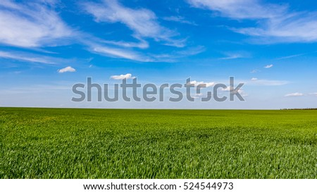 green crop meadow under nice sky with clouds
