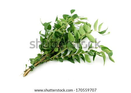 Green curry OR Sweet neem leaves