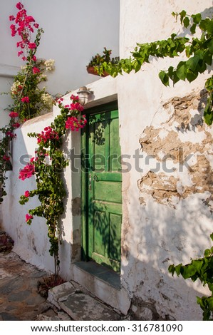 green door on an old whitewashed wall and a branch with flowers. Background. - stock photo