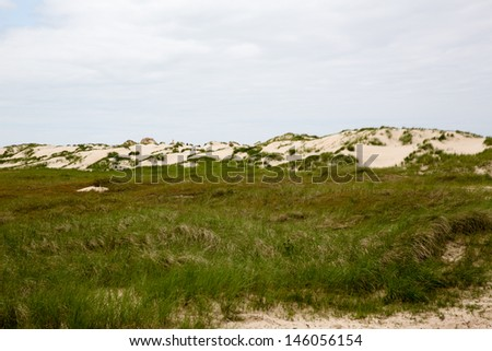 green dunes at the coastline of Norderney, Germany (German Sea) - stock photo