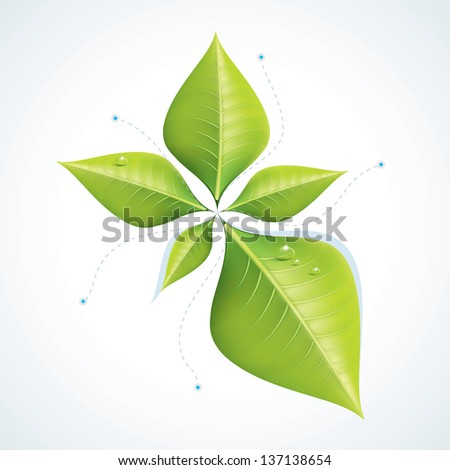 Green economy concept - Leafs inforgaphics EPS10 - stock photo