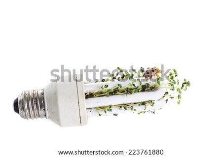 Green Energy. - stock photo