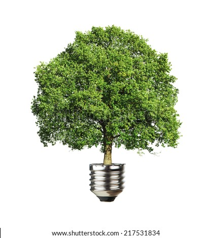 Green energy, close up of a tree growing out from the light bulb isolated on white background - stock photo