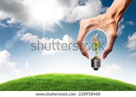 Green energy concept - green tree growing in bulb and grass field with bulb shaped hand on blue sky and cloud background - stock photo