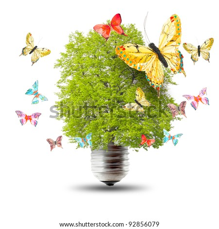 Green energy concept - green tree growing out of a bulb and butterflys - stock photo