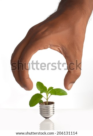 Green energy concept - green tree growing out of a bulb  with bulb shape hand - stock photo